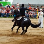 rodeo-2016-0252