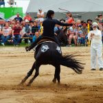 rodeo-2016-0253