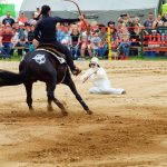 rodeo-2016-0254