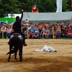 rodeo-2016-0256