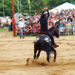 rodeo-2016-0264