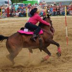 rodeo-2016-0274