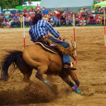 rodeo-2016-0277