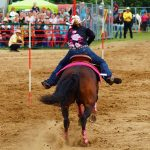 rodeo-2016-0280