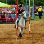 rodeo-2016-0281