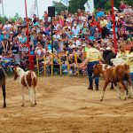 rodeo-2016-0284