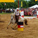 rodeo-2016-0285