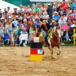 rodeo-2016-0294