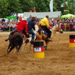 rodeo-2016-0300