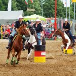rodeo-2016-0306