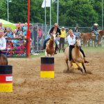 rodeo-2016-0309
