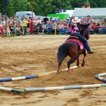 rodeo-2016-0319