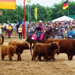 rodeo-2016-0326
