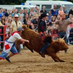 rodeo-2016-0329