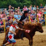 rodeo-2016-0331