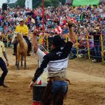 rodeo-2016-0334