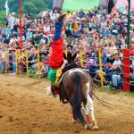 rodeo-2016-0343