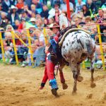 rodeo-2016-0345