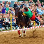 rodeo-2016-0346