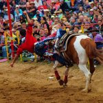 rodeo-2016-0349