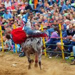 rodeo-2016-0350