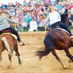 rodeo-2016-0353