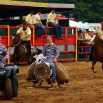 rodeo-2016-0362