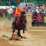 rodeo-2016-0372
