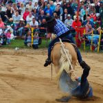 rodeo-2016-0374