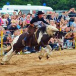 rodeo-2016-0378