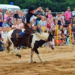 rodeo-2016-0379