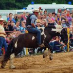 rodeo-2016-0381
