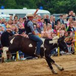 rodeo-2016-0382