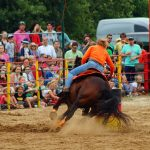 rodeo-2016-0387