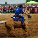rodeo-2016-0388